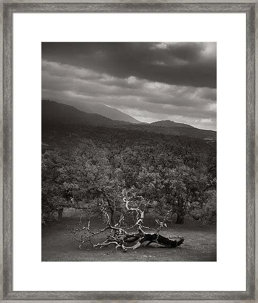 Resigned Framed Print by Joseph Smith