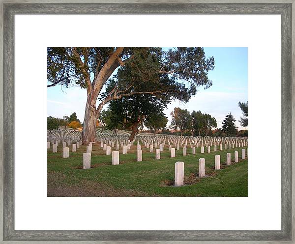 Resting In Peace Framed Print