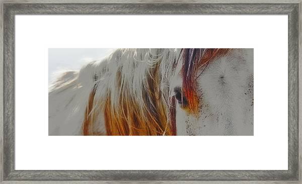 Retro Sunlight And Grey Framed Print