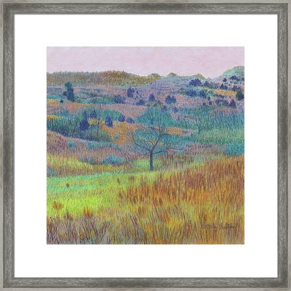 Return Of Green Dream Framed Print