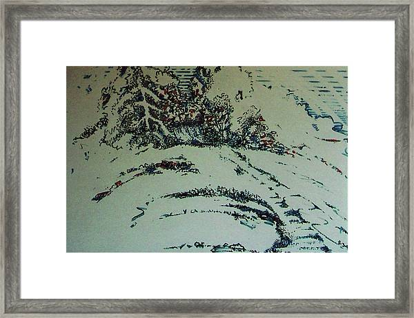 Rfb0201 Framed Print