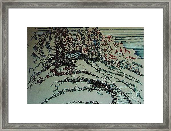 Rfb0205 Framed Print
