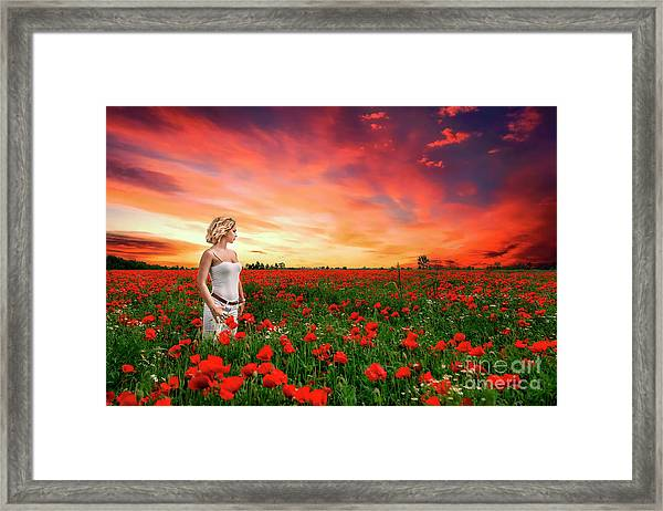 Rhapsody In Red Framed Print