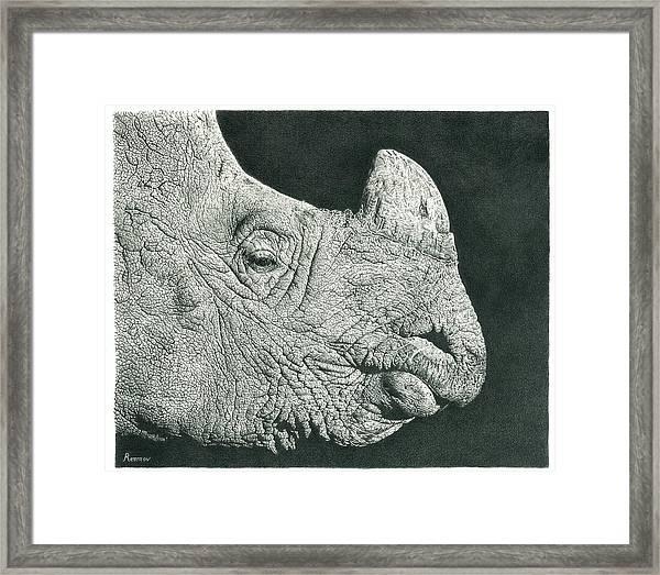 Rhino Pencil Drawing Framed Print