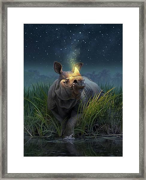 Rhinoceros Unicornis Framed Print