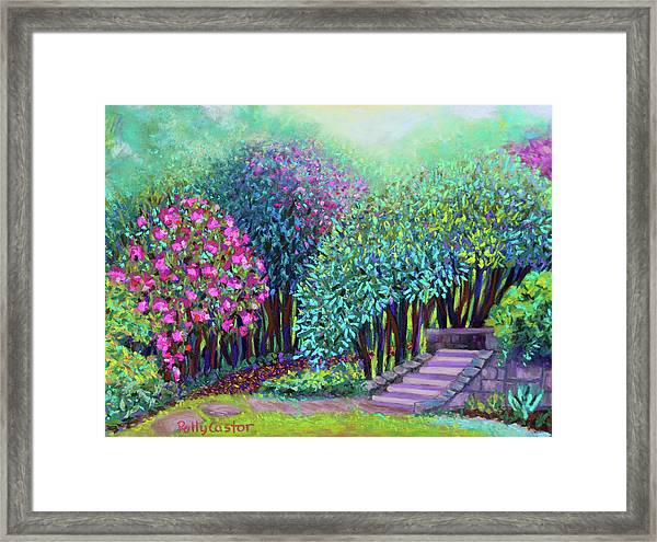 Rhododendrons In The Sunken Garden Framed Print