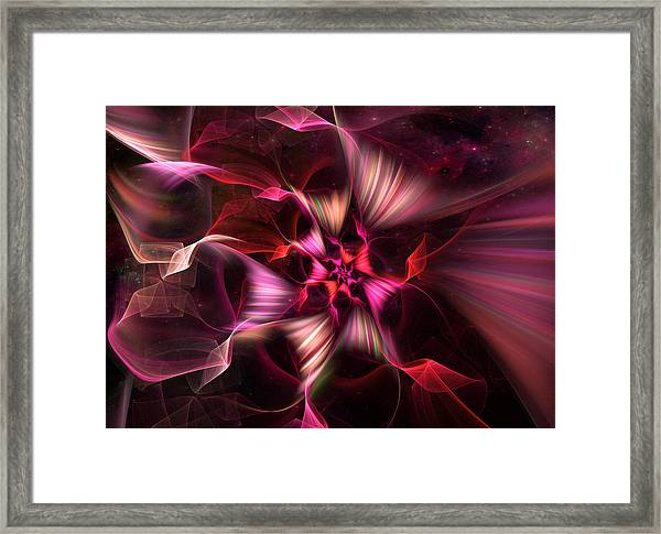 Ribbon Candy Rose Framed Print