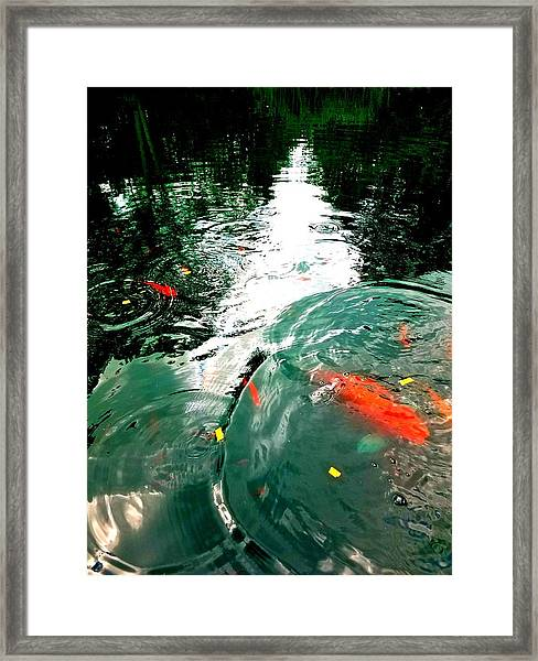 Ripple To The Past  Framed Print