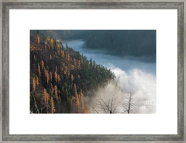 River Of Mist Framed Print