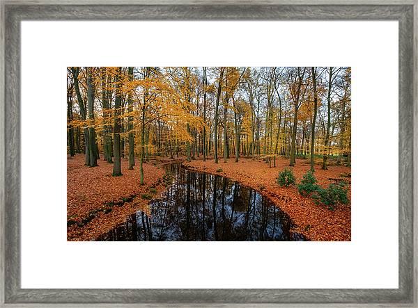 River Through Autumn Framed Print