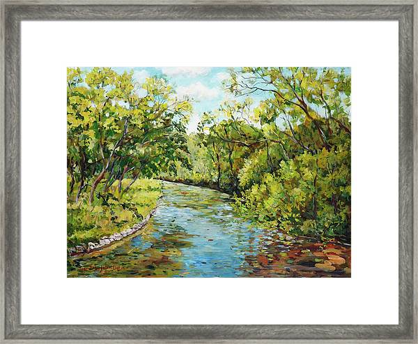 River Through The Forest Framed Print