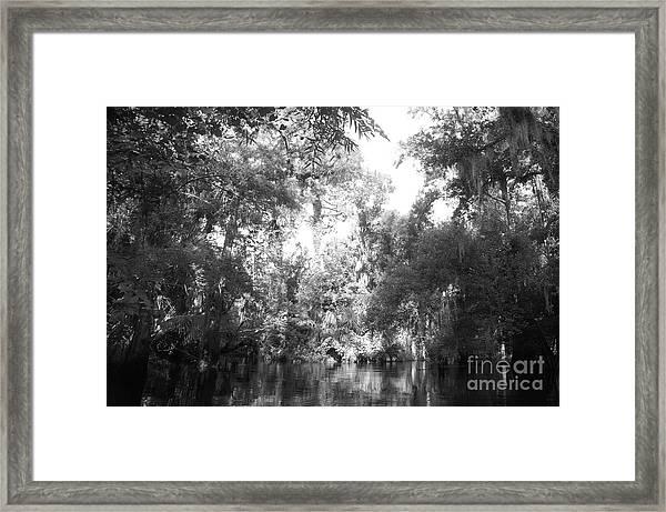 River Wooded Framed Print