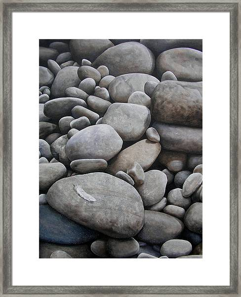 Riverbank Of Napo Framed Print