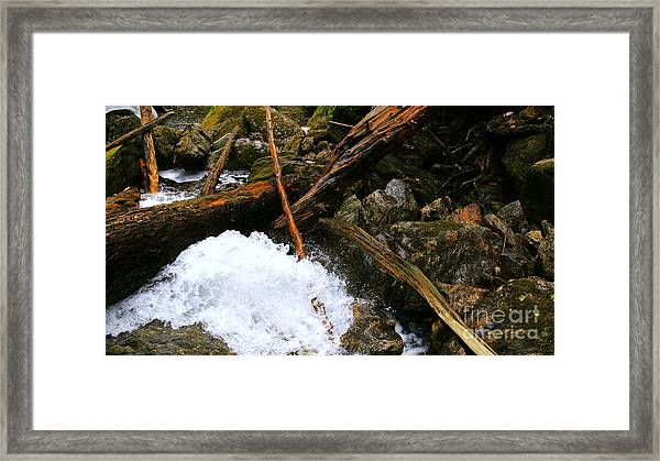 Riverwood Framed Print