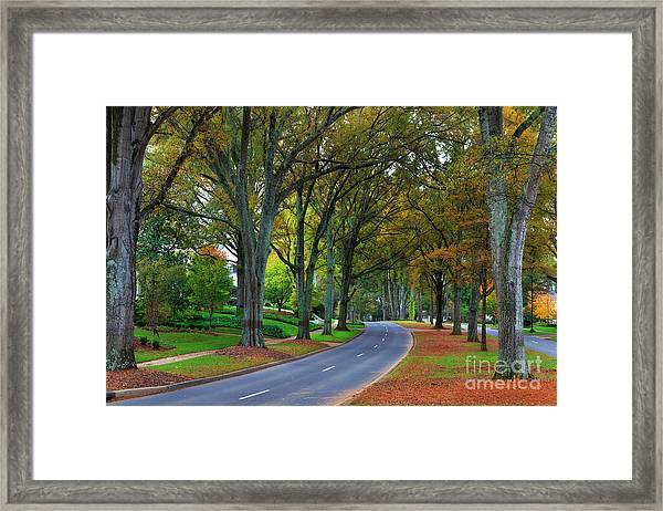 Road In Charlotte Framed Print