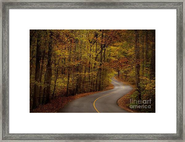 Road Through Tishomingo State Park Framed Print