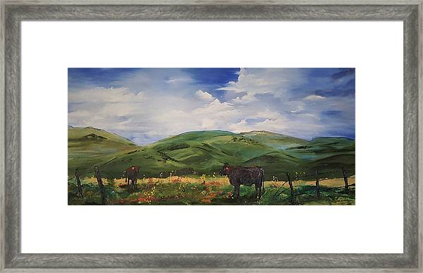 Road To Melrose, Montana         32 Framed Print