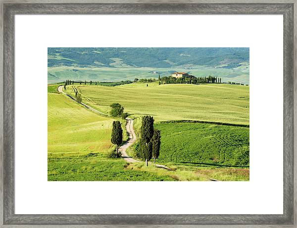 Road To Terrapille Framed Print