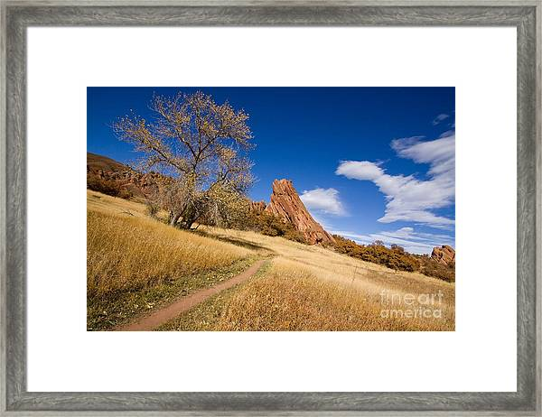 Road To The Rocky Blue Framed Print by Andrew Serff