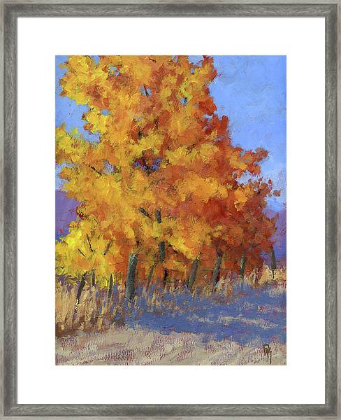 Roadside Attraction Framed Print