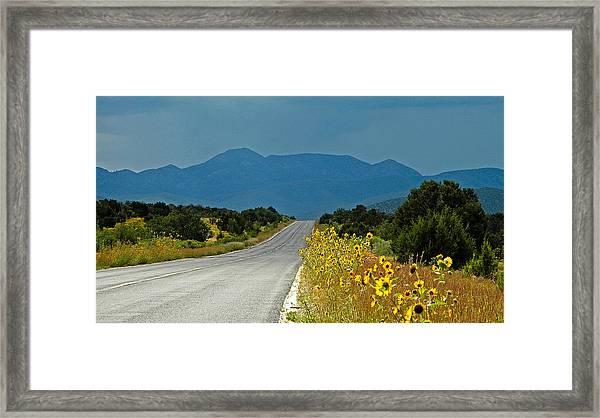 Roadside Florist Framed Print