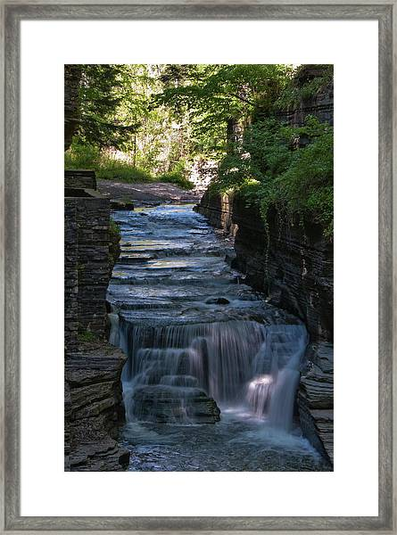 Robert Treman 0512 Framed Print