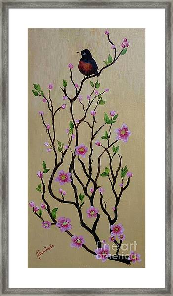 Robin And Spring Blossoms Framed Print