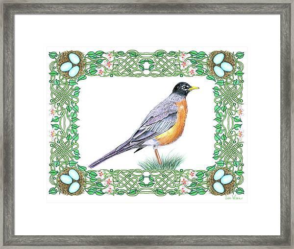 Robin In Spring Framed Print
