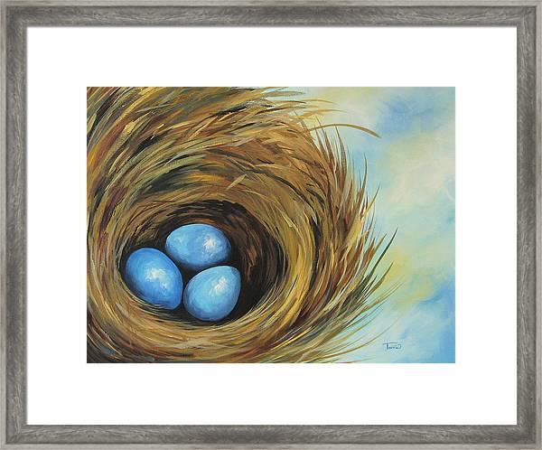Robin's Three Eggs II Framed Print