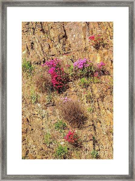 Rock Cutting 1 Framed Print