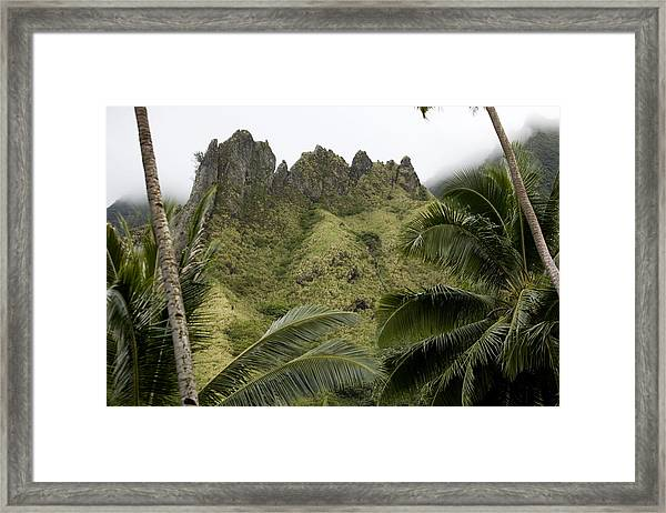 Rock Formations Seen Through Coconut Framed Print