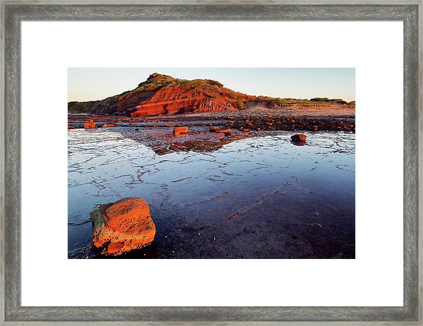 Rock Shelf At Long Reef 1 Framed Print