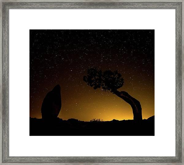 Rock, Tree, Friends Framed Print