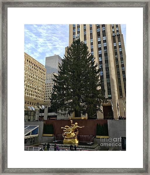 Rockefeller Center Christmas Tree Framed Print
