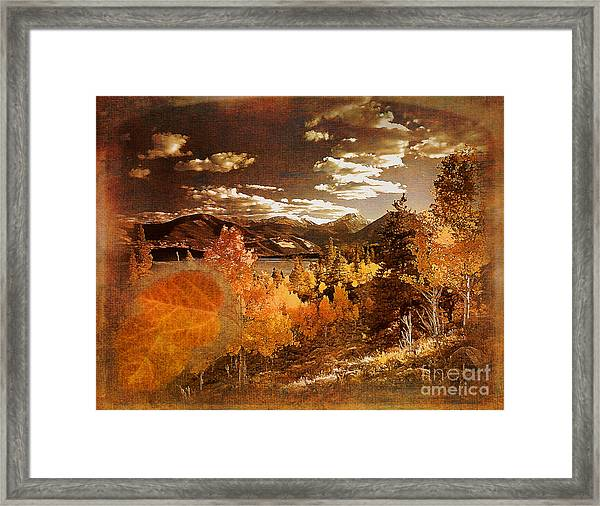 Rocky Mountain Gold 2015 Framed Print