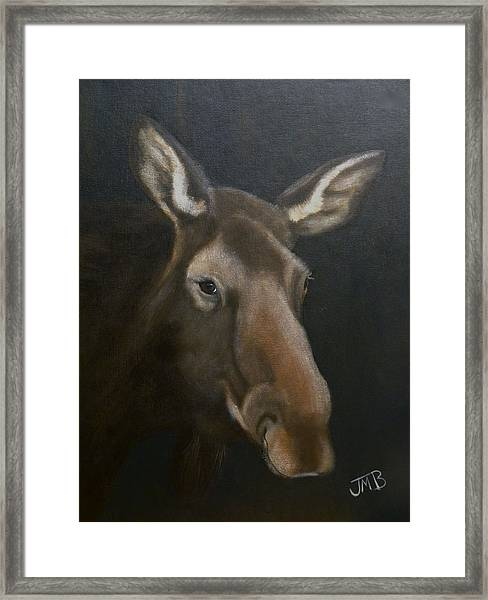 Rocky Mountain House Moose Framed Print by Janice M Booth