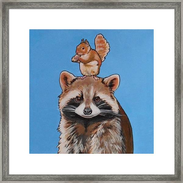Rodney The Raccoon Framed Print