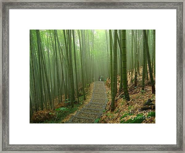 Romantic Bamboo Forest Framed Print
