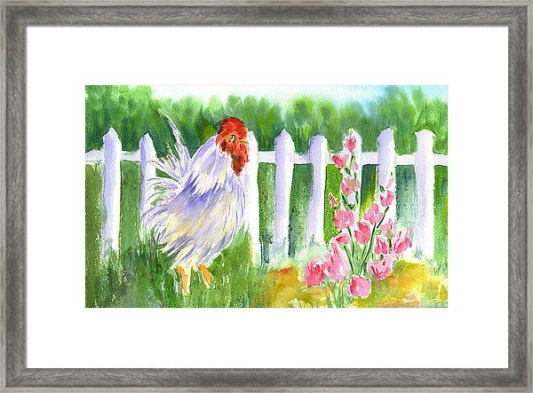 Rooster 05 Framed Print by Ruth Bevan