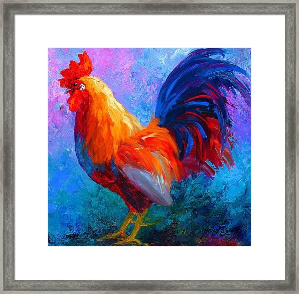 Rooster Bob Framed Print