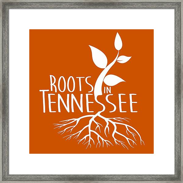 Roots In Tennessee Seedlin Framed Print