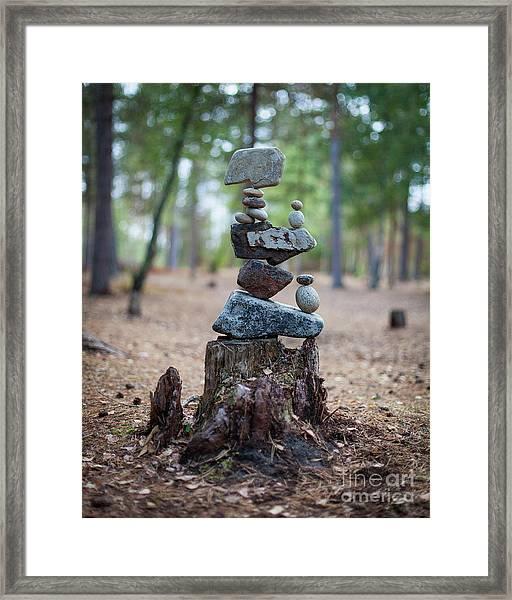 Roots Rock Framed Print