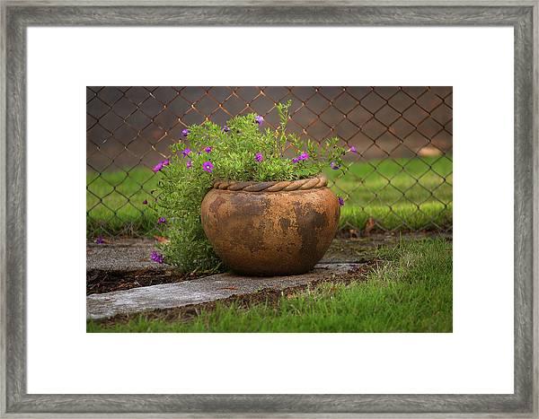 Rope Pot Flowers Framed Print