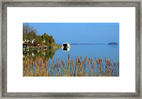 Rose Bay Framed Print