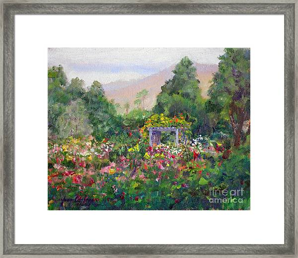 Rose Garden In Bloom Framed Print