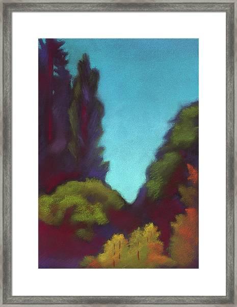 Rose Gardens View In Berkeley  Framed Print