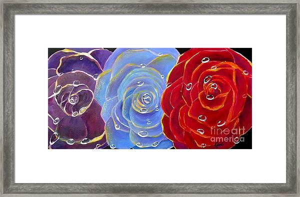 Rose Medley Framed Print