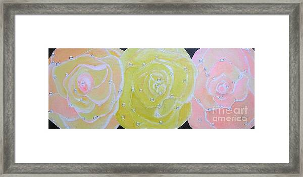 Rose Medley With Dewdrops Framed Print