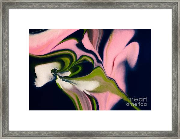 Rose With No Thorns Framed Print