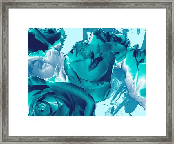 Roses #4 Framed Print